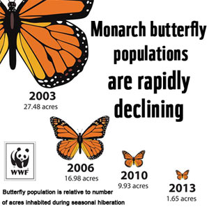World Wildlif Fund (WWF), monarch butterfly conservation