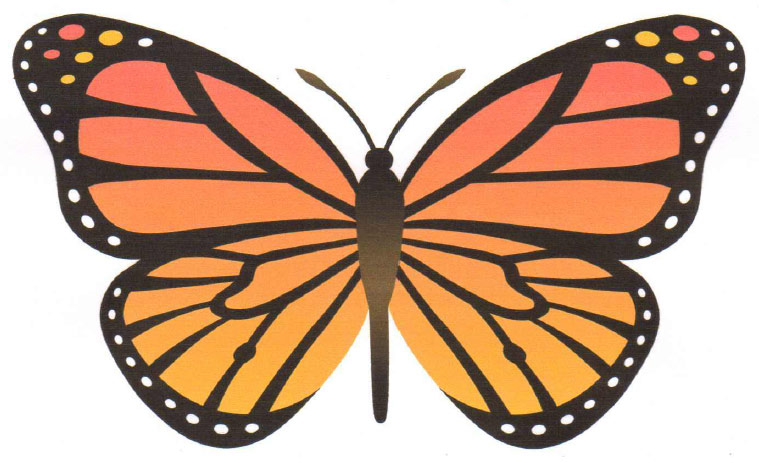 Patterns For Flapping Butterflies New Butterfly Pattern