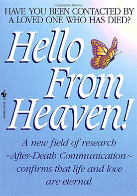 Hello From Heaven Book