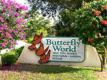 Butterfly Exhibits And Houses